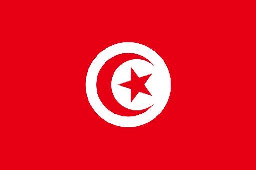 Виза в тунис безвизовый режим