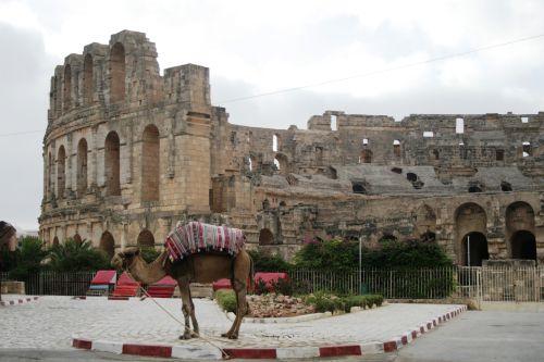 В настоящее время туристы могут увидеть то, что осталось от Эль-Джема