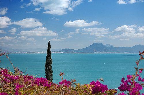 Не забудьте посмотреть на залив Карфагена со смотровой площадки Сиди-бу-Саида!